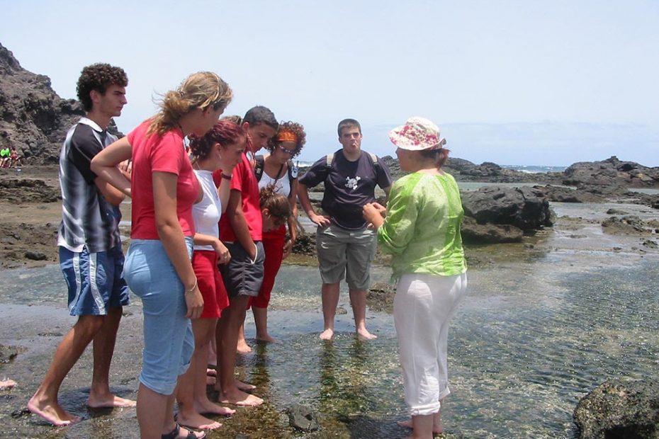 Limonium Canarias - Educación Ambiental - Aula del Mar